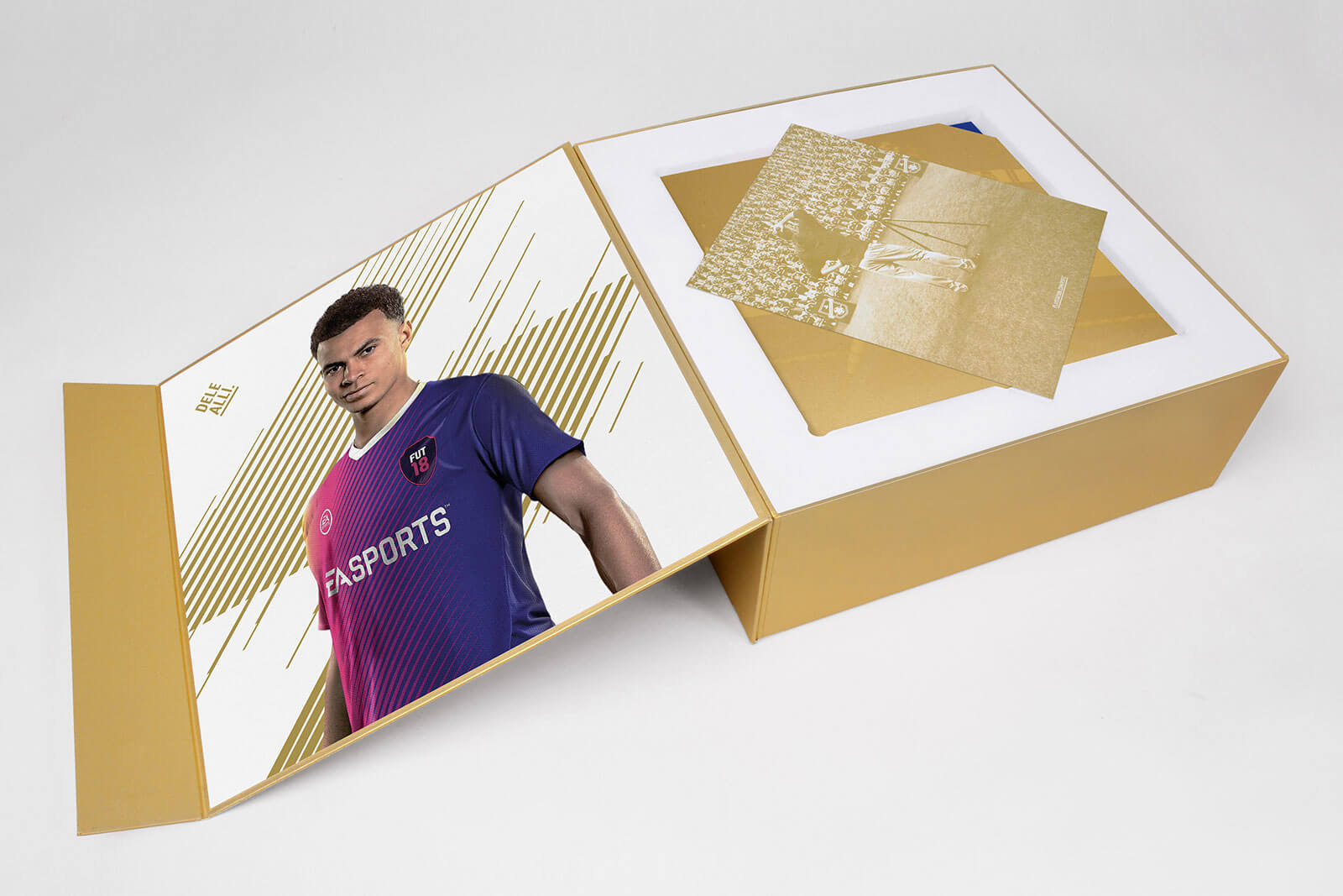 FIFA 18: Media Kit - Art Print
